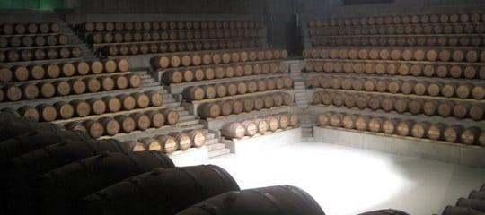 Rocca Cellar 540