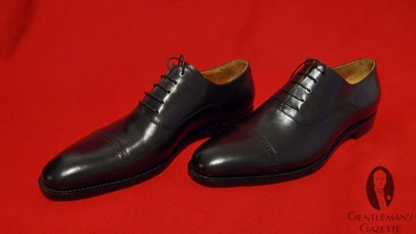 Paragon Paradis Captor Brogue Shoes in black