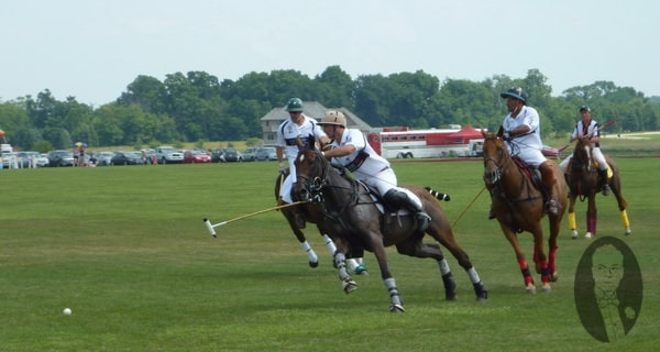 Polo Play - Introduction to an Ancient Sport