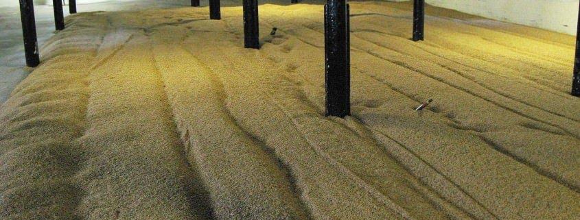 Highland park malting floor