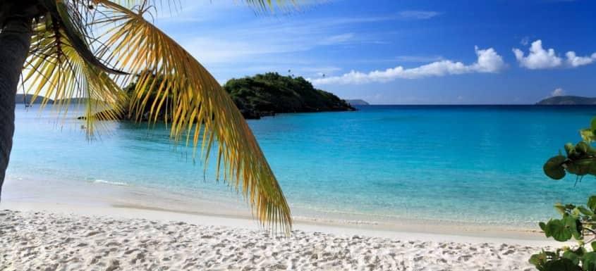 Caribbean - Home of Rum