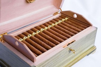 Cigar should be stored in a Humidor