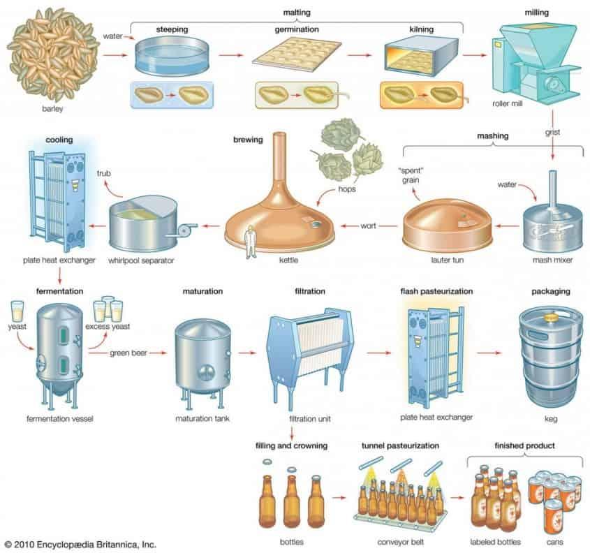 Beer Flowchart