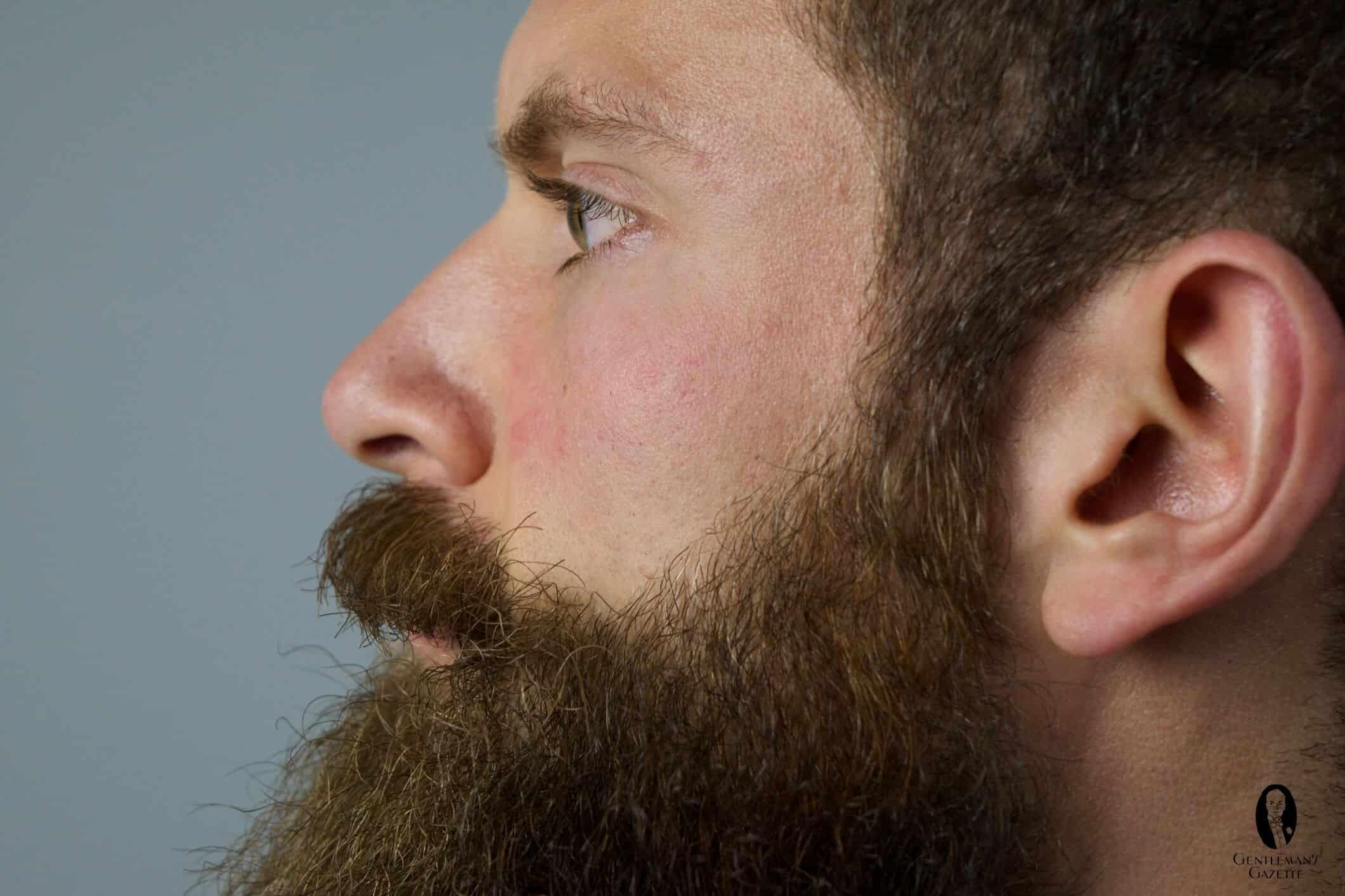 How To Trim A Beard Gentlemans Gazette
