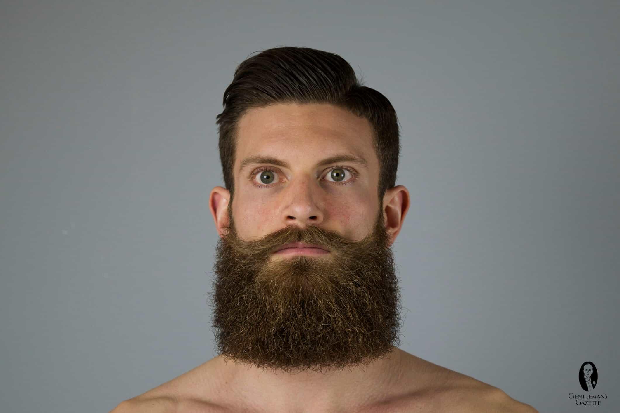 how to trim a beard gentleman 39 s gazette. Black Bedroom Furniture Sets. Home Design Ideas