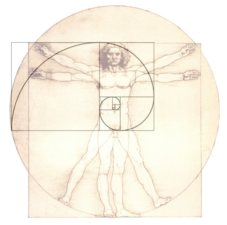 The Vitruvian Man (by Da Vinci) and the Golden Ratio